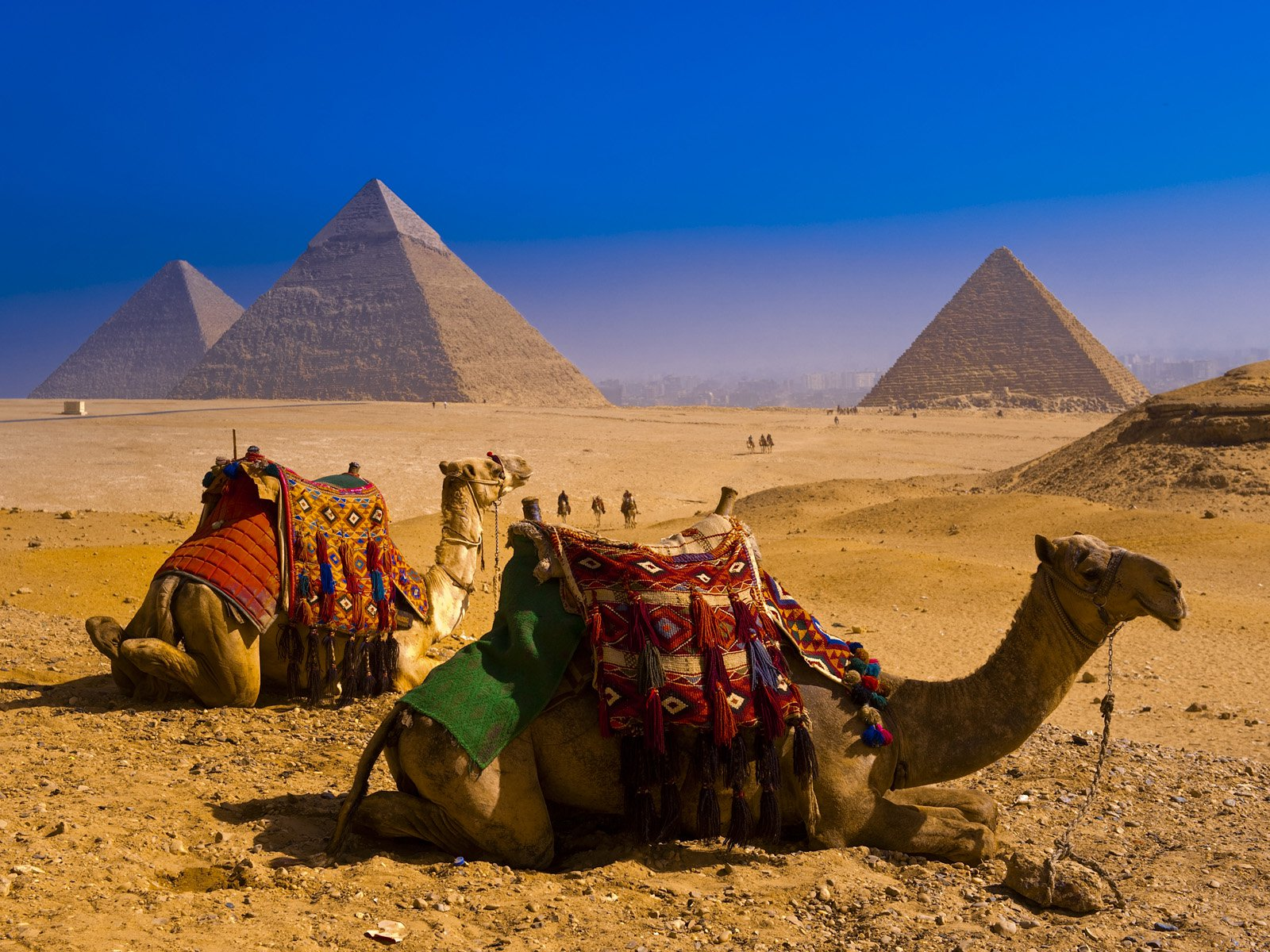 Egypt Day Tours & Egypt Travel Packages